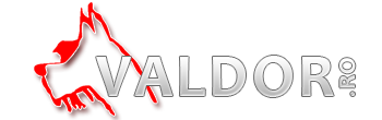 Valdor SRL